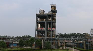 Dasheng factory area2